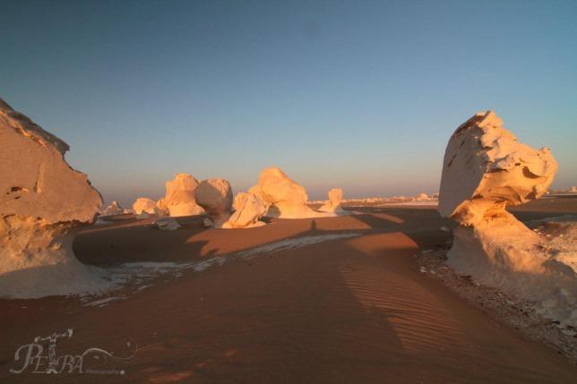 White Sahara 5